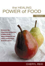 Picture of The Healing Power of Food Book